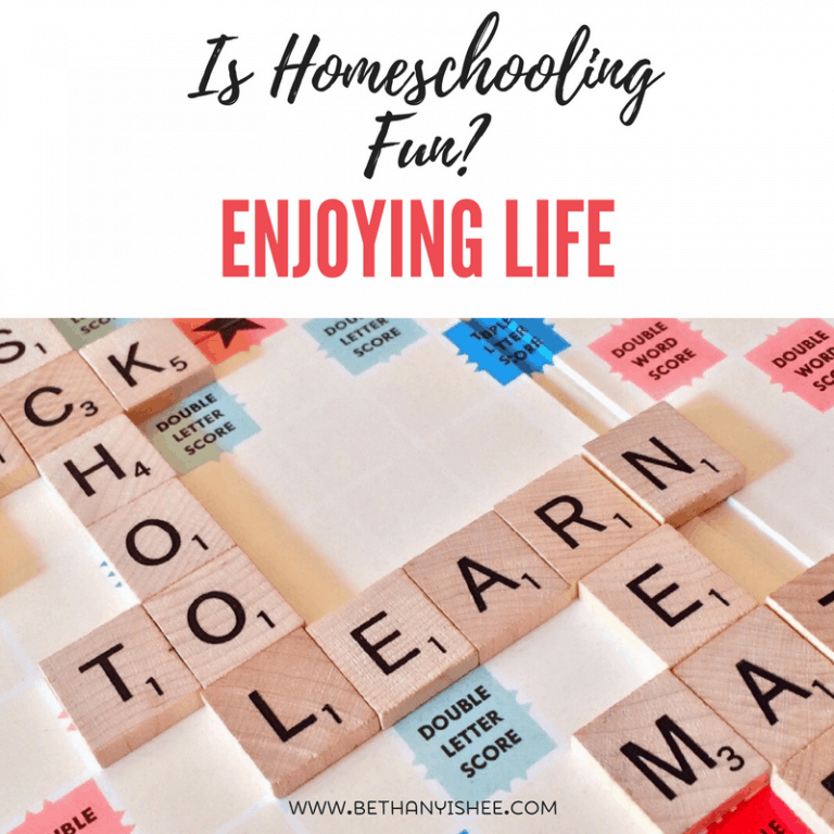 Is Homeschooling Fun? Enjoying Life One Day at a Time