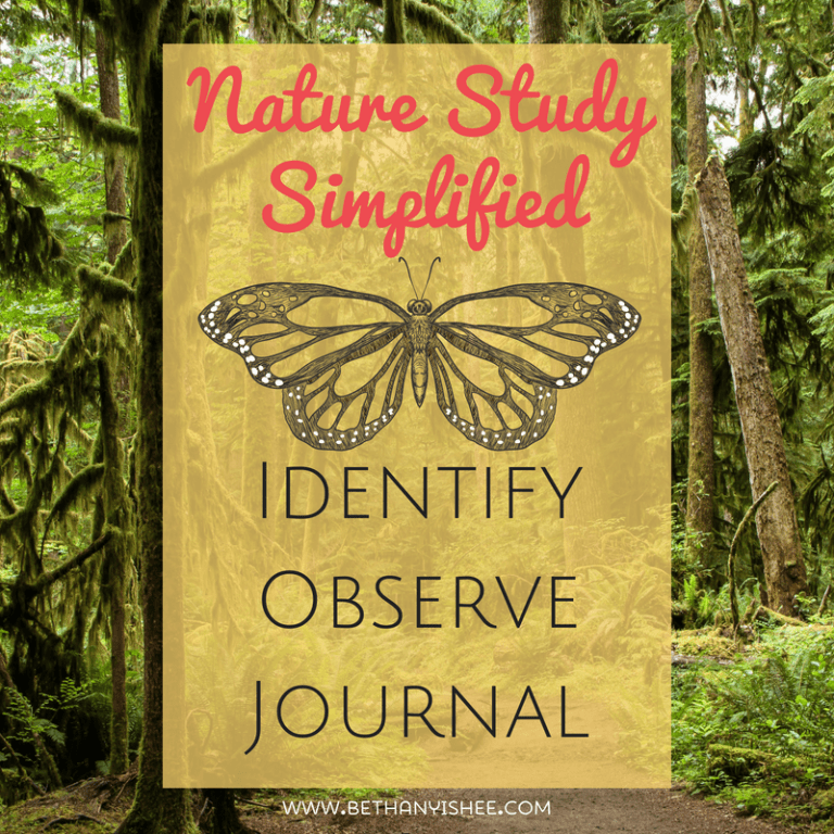 Nature Study Simplified: Identify, Observe, and Journal
