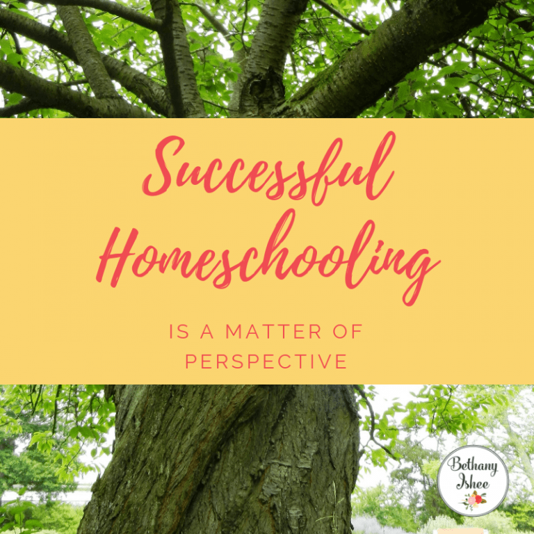 Successful Homeschooling is a Matter of Perspective